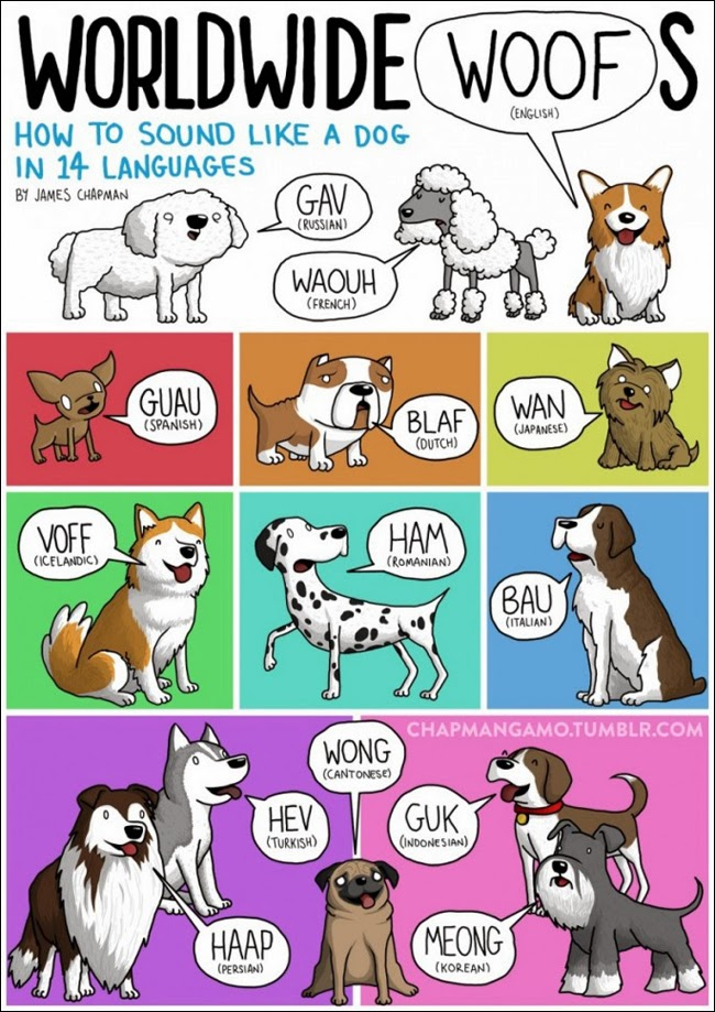 Dogs bark in different countries - James Chapman 'how to sound like a dog in different languages'/